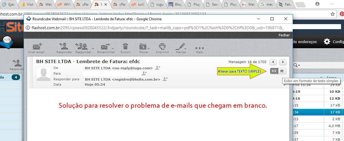 Texto simples X HTML